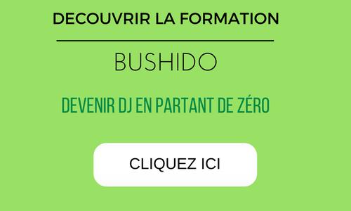 yann-costaz-bushido