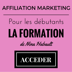 affiliation-marketing-avis