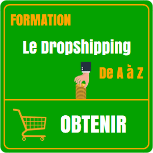 le-dropshipping-de-a-a-z-widget