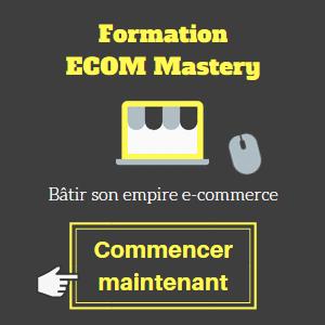 widget-ecom-mastery