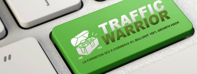 avis-traffic-warrior