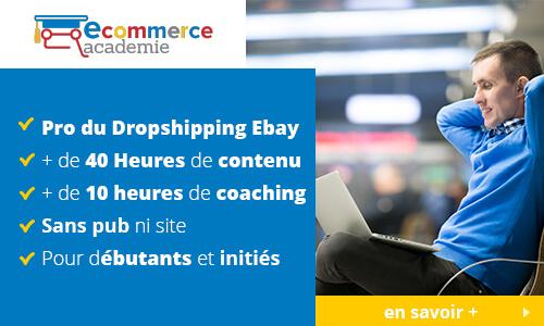 formation-pro-du-dropshipping-ebay
